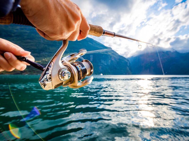 Canne da pesca da gommone: come sceglierle?