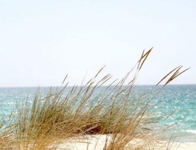 Castiglione della Pescaia: un mare da sogno nel cuore della Toscana